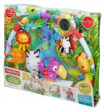 FISHER PRICE DELUXE ΓΥΜΝΑΣΤΗΡΙΟ RAINFOREST